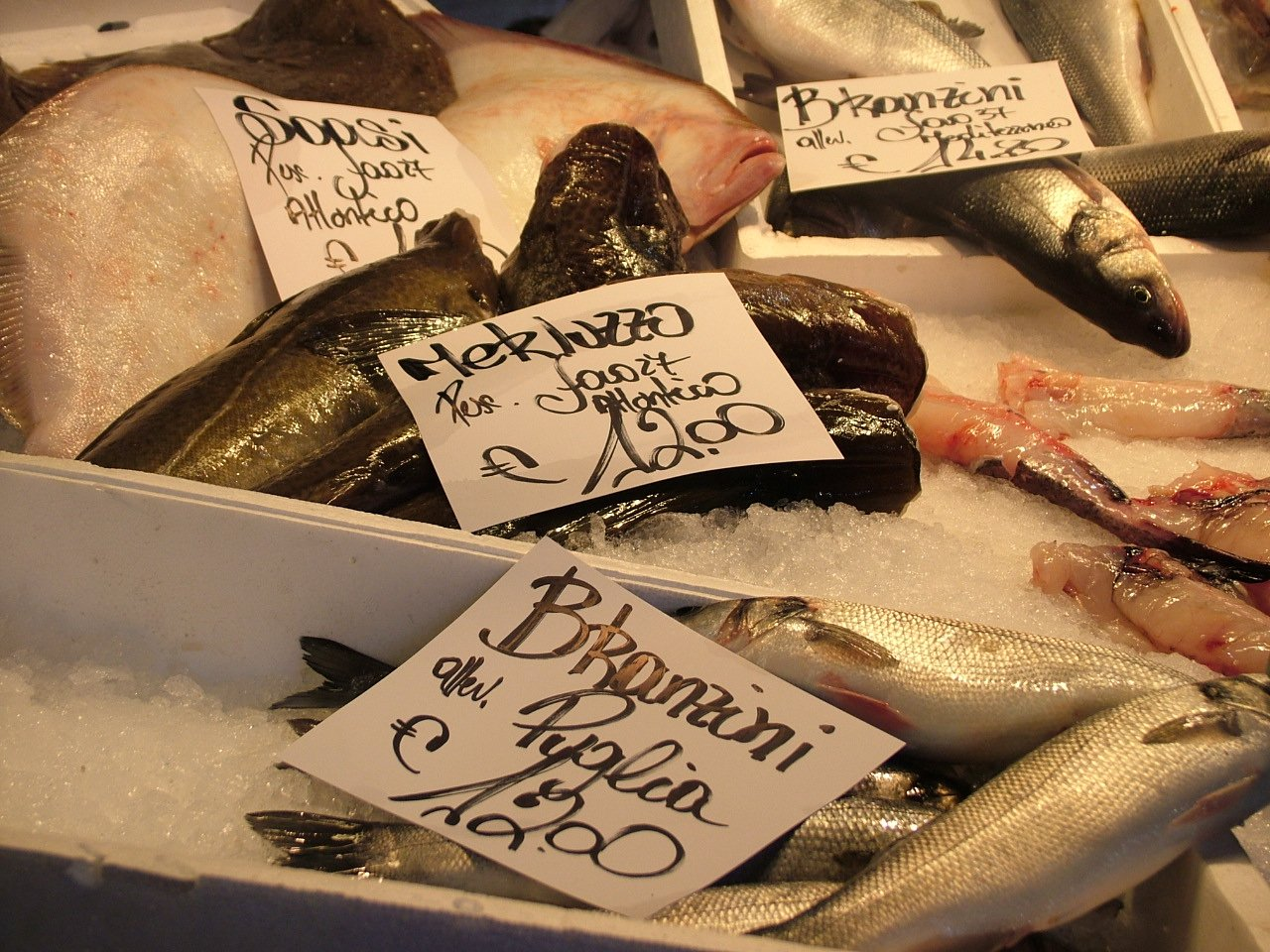 italian fish recipes