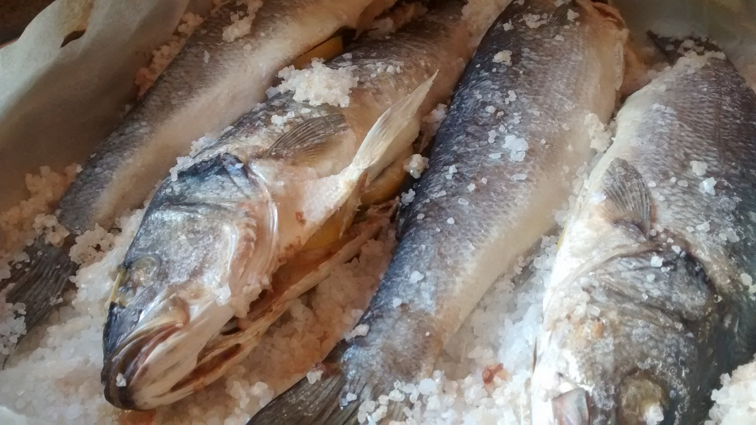 Branzino in Crosta Cook In Venice