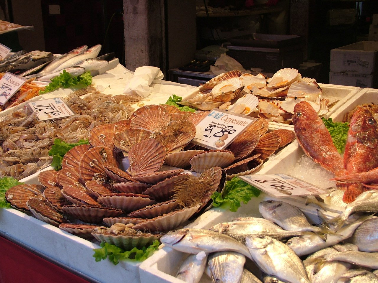 baked scallops italian