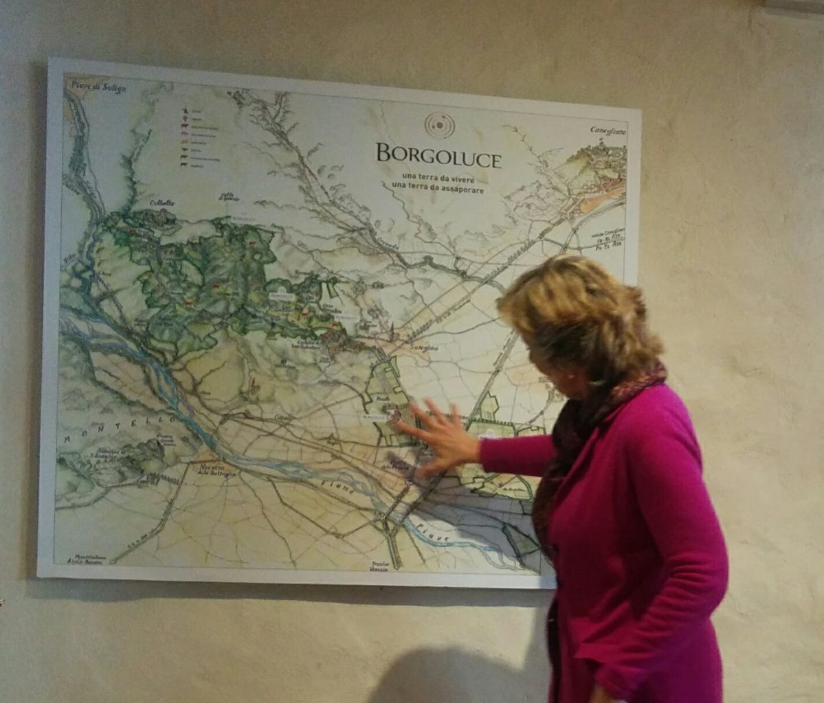 The estate of Borgoluce